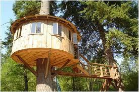build my house build a tree house zand s wacky