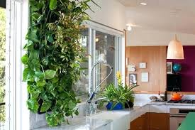 creating an indoor herb garden home design ideas and pictures