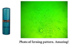 ferning pattern in spanish fertile focus ovulation microscope