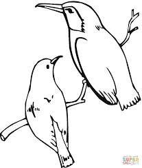 costa u0027s hummingbird coloring page free printable coloring pages