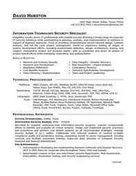 resume for director position applying for a job as an it director view our professionally