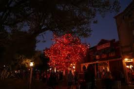 the story behind disneyland u0027s halloween tree ladybug blog
