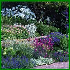 beet am hang auf verschiedenen ebenen anlegen gärten