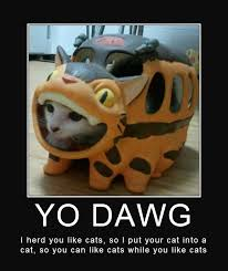 Yo Dawg Know Your Meme - cat in catbus xzibit yo dawg know your meme