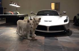 ultimate man cave the ultimate man cave white lions and supercars