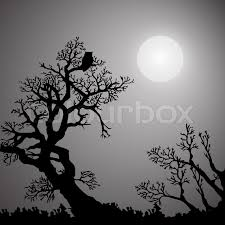 monochrome background with trees owl and moon stock