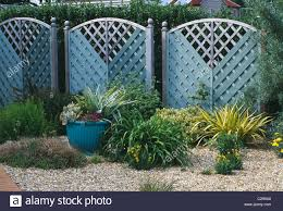 seaside garden blue painted wooden trellis fence and windbreak