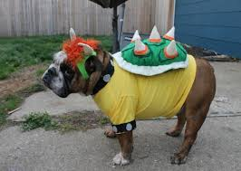 King Koopa Halloween Costume 10 Animals Bowser Fancy Dress Costumes