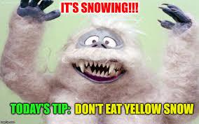 Snow Meme - it s snowing today s tip don t eat yellow snow meme