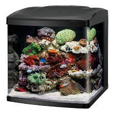 coralife led biocube aquarium petsolutions