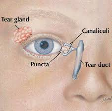 blocked tear duct tummytime