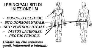 come si fanno le punture sul sedere in quali parti corpo e dove si esegue una iniezione