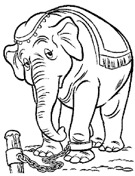 elephant coloring pages 360coloringpages