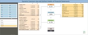 Excel Template For Financial Analysis Dynamic Common Size And Dupont Analysis Financial Statements In