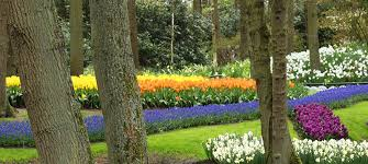 How To Design A Flower Bed How To Design A Backyard Landscape Pictures