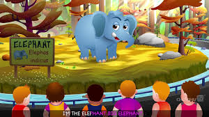 elephant finger family chuchu tv animal finger family songs