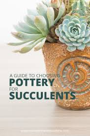 271 best pottery addiction images choosing the right pot for your succulents succulents and