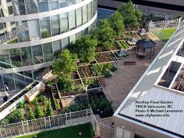 vegetable roof garden native garden design rooftop vegetable