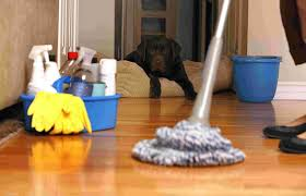 Best Laminate Floor Cleaner Cleaning Services In Pune