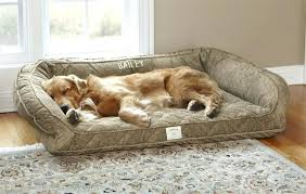 Cheap Dog Beds For Sale Orvis Dog Beds On Sale U2013 Restate Co