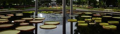 The Missouri Botanical Garden Gardens Of The World Missouri Botanical Garden Frisella Nursery