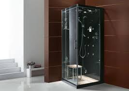 Steam Shower Bathtub Shower Interesting Corner Steam Shower Tub Combo Dramatic