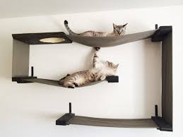 decorative wall shelves for cats