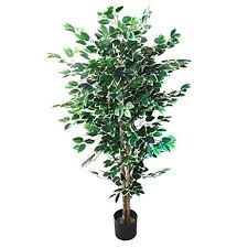 amazon com artificial ficus tree with variegated leaves and