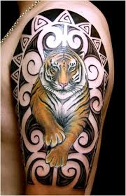 angry tiger shoulder tattoos photos pictures and sketches