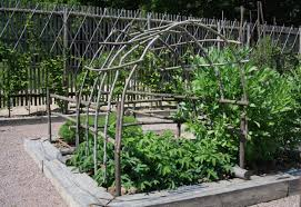 inspiration for your vegetable garden from a beautiful french