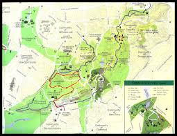 Virginia Creeper Trail Map by 7 Best Wildflowers Of New York City Nyc Images On Pinterest