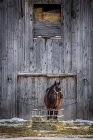 The Hay Barn Collinsville The Hay Barn Collinsville Alabama Engagement Photos Horse