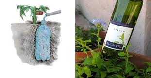 Diy Self Watering Herb Garden 3 Diy Self Watering Ideas For The Garden Perfect When You Are
