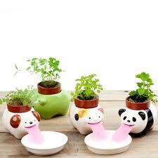popular self watering indoor plant buy cheap self watering indoor