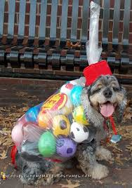 200 coolest pet halloween costumes for you dog