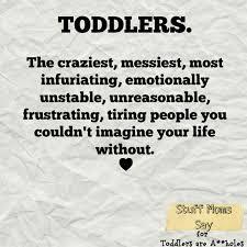 Toddler Meme - 8 memes that explain toddlerhood perfectly