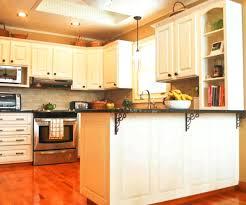 kitchen cabinets refinished interior diy kitchen cabinet painting gammaphibetaocu com