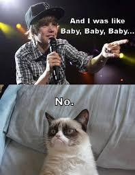 Grumpy Cat Photo 1 Best - top 49 most funniest grumpy cat quotes just laughs fun and humor