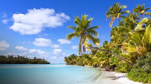 tropical island paradise tropical island paradise on one foot island in the cook islands