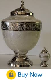 funeral urn 52 beautiful ideas of what to do with ashes advice from a widow