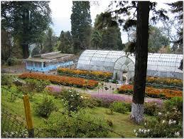Rock Garden Darjeeling by Darjeeling City Guide U2013 Darjeeling Travel Attractions India