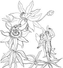fairies coloring pages 6 coloring kids