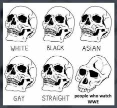Asian Gay Meme - dopl3r com memes white black asian gay straight people who watch wwe