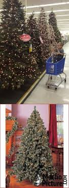 the 25 best hobby lobby trees ideas on 40