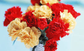 Wedding Flowers October 26 Fresh And Charming Flowers In Season In October Everafterguide