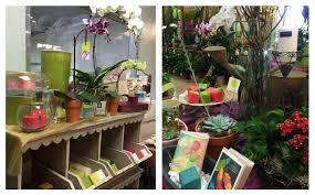 Austin Tx Flower Shops - flower shop austin tx sheilahight decorations