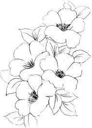 coloring pages flower patterns to color flower printables to