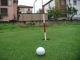 putting greens com backyard golf green photos
