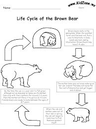 bear worksheets life cycle of a brown bear with words