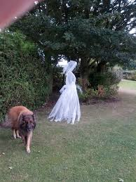 How To Make A Haunted Maze In Your Backyard Best 25 Chicken Wire Ghosts Ideas On Pinterest Diy Halloween